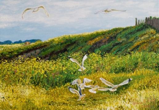 peinture mouettes bretagne